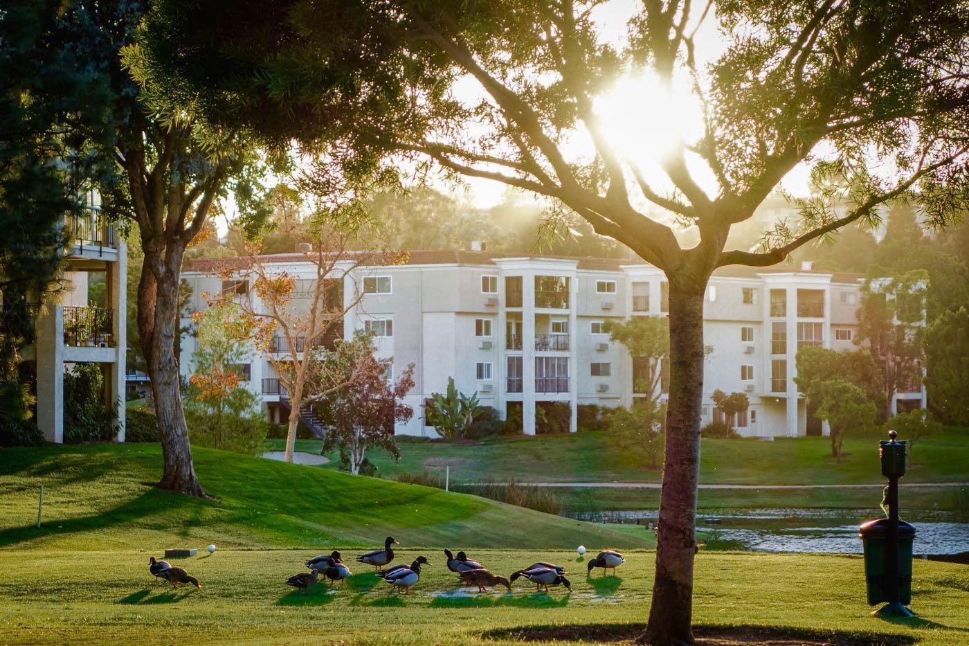 Leisure World Laguna Woods >> Laguna Woods Village | Active Adult Community Laguna Woods CA