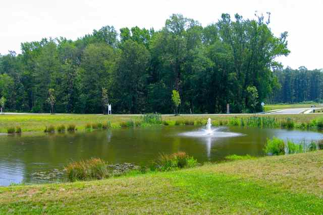 Mature Woods & Scenic Ponds